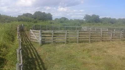 Fazenda A Venda Em Miranda - Ms (pecuária) - 1024