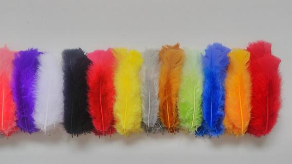 Penas Coloridas Para Flechas,petecas E Artesanato ( 600 Uni)
