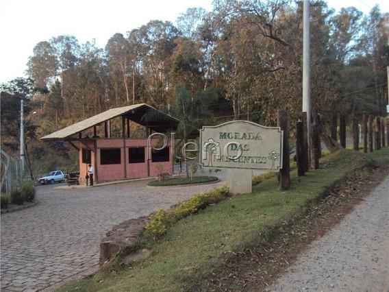 Terreno À Venda Em Joaquim Egídio - Te023354
