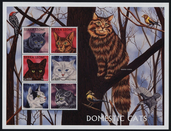 1997 Felinos - Gatos Domésticos - Sierra Leona Mnh