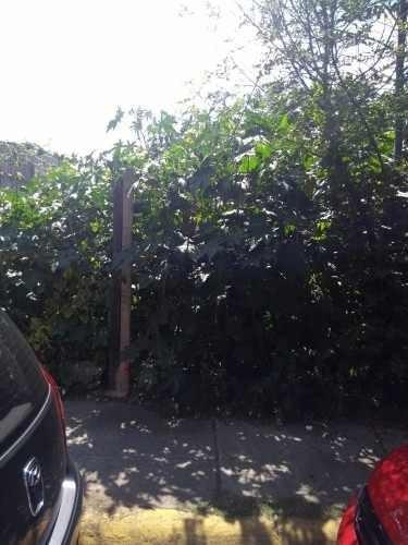 Se Vende Terreno, Jardines De Atizapan Unico En La Zona 300m Plano