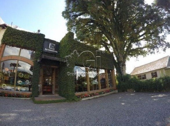 Casa Comercial - Vila Suica - Ref: 3173 - V-gi3179