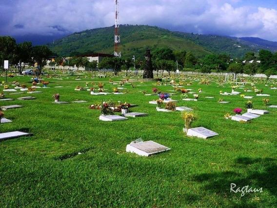 Lote Doble Cementerio Jardines Del Recuerdo