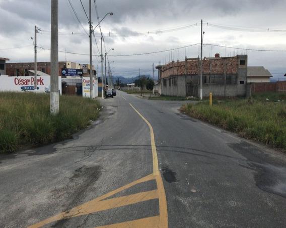 Terreno - Te00001 - 33230074
