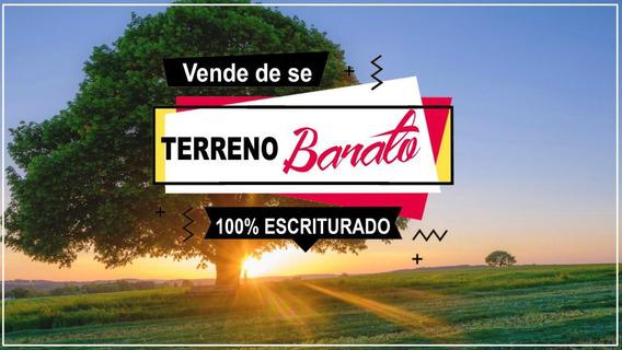 06c- Barato E Bom