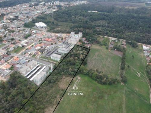 Área À Venda Com 45000m² Por R$ 9.000.000,00 No Bairro Tindiqüera - Araucária / Pr - Ar0200
