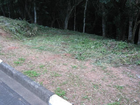 Terreno Em Granja Viana, Cotia/sp De 0m² À Venda Por R$ 250.000,00 - Te356360