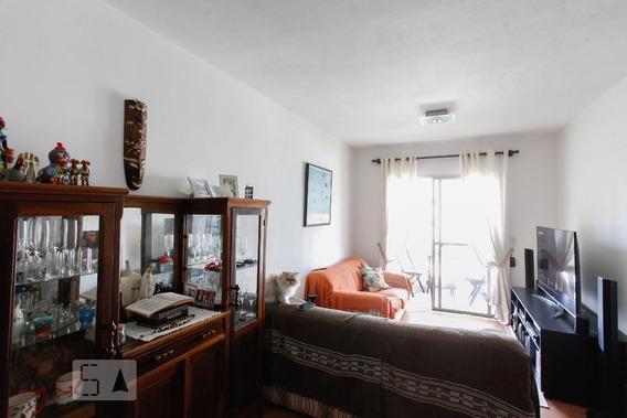 Apartamento Para Aluguel - Vila Mascote, 3 Quartos, 75 - 893122047