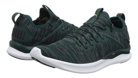Zapatillas Puma Ignite Flash Evoknit Envio Gratis
