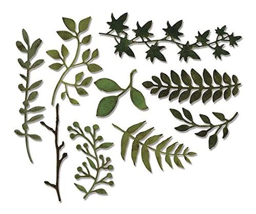 Juego De Matrices Sizzix 661206 Thinlits, Greens De Jardin D