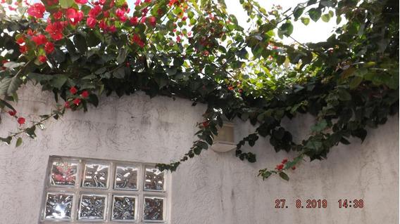 Casa Bela Na Vila Mascote