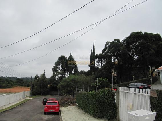 Terreno Padrão Em São José Dos Pinhais - Pr - Te0031_impr