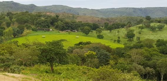 Fazenda Dentro Do Df 102hectares