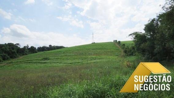Área Para Loteamento Na Beira Do Asfalto - 2825