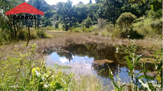 80.000 M2 - Dentro Serra Japi - Reserva Biológica Municipal - 8113f