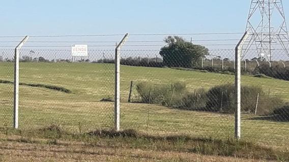 Ruta Perimetral 102 - Cno Benito Berges