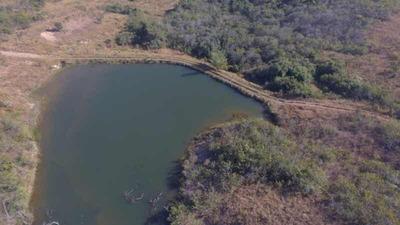 Fazenda Itapemirim Goiás