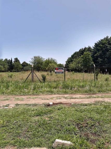 Terreno Km 46 Virrey Del Pino Excel Entorno Zona De Quintas