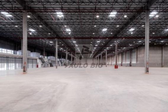 Galpao Industrial - Potuvera - Ref: 2510 - L-2510