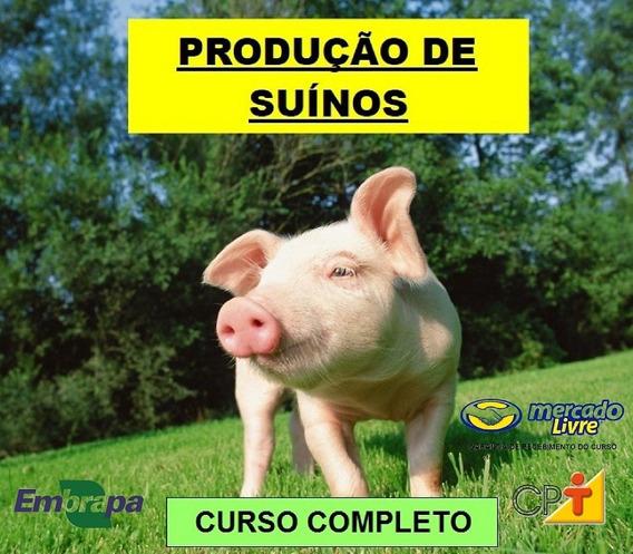 Curso De Suinocultura - Produção De Porcos