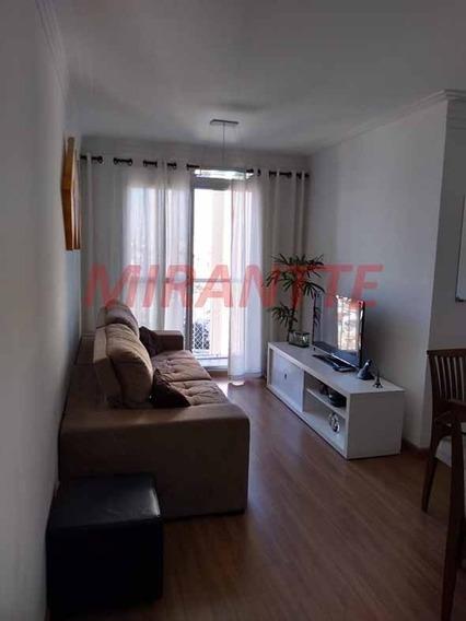 Apartamento Em Cachoeirinha - São Paulo, Sp - 329480