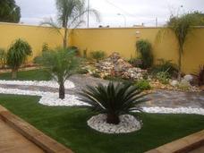 Jardinero Particular, Servicio De Jardinería, Mantenimiento