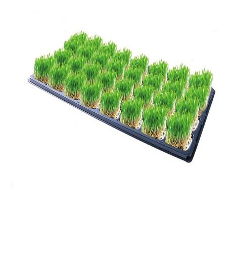 Nutrientes Para Forraje Verde Hidroponico  Para 1000l