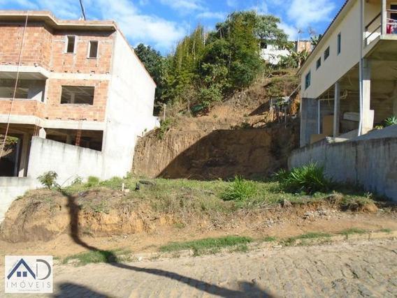 Terreno Para Venda Em Nova Friburgo, Conselheiro Paulino - 124_2-576432