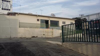 Casa Á Venda E Para Aluguel Em Vila João Jorge - Ca180938