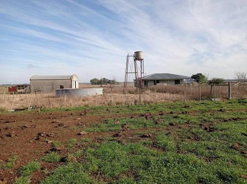 Campo Agrícola En Gualeguaychú (camino De Rojas)