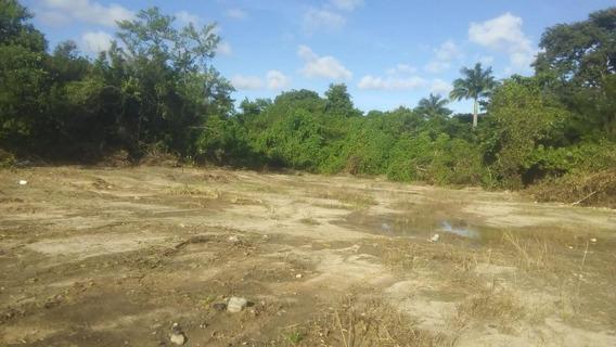 Terreno Em Dois Irmãos, Recife/pe De 0m² Para Locação R$ 7.000,00/mes - Te280144
