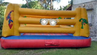 Inflable Ring De Box