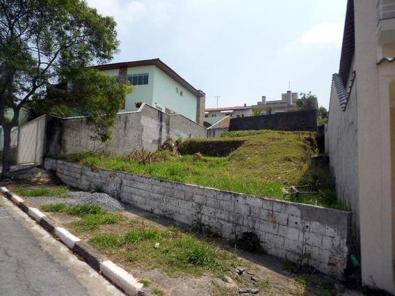 Terreno Residencial À Venda, Parque Dos Príncipes, São Paulo. - Te4539
