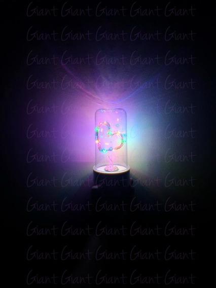 7 Cúpula Encantada Redoma Luminária Led Coração Pilha Color