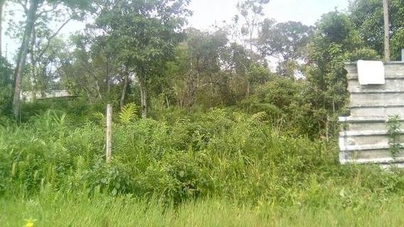 Terreno Plano Em Itanhaém Lado Morro Com 250m² Ref 4903