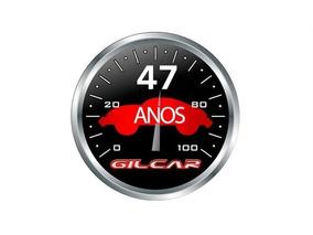 Peugeot 307 1.6 Passion 16v Gasolina 4p Manual