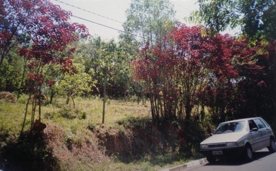 Terreno Em Granja Viana, Cotia/sp De 0m² À Venda Por R$ 620.000,00 - Te121475