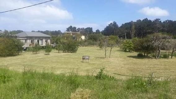 Terreno En Venta En San Vicente