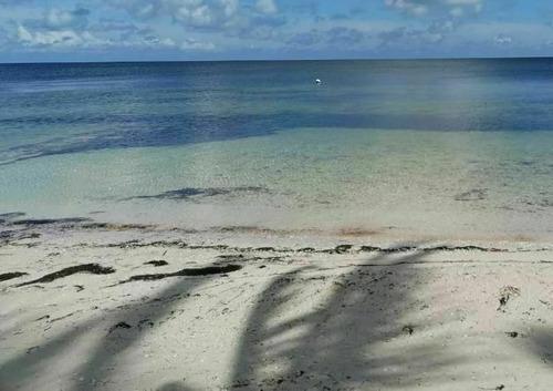 Imagen 1 de 6 de Lotes De Oportunidad En Santa Clara, Yucatan | En Tercera Fi