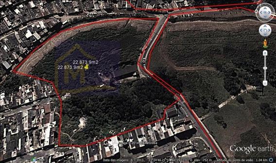 Terreno Para Venda, 22873.0 M2, Bananal - Guarulhos - 366