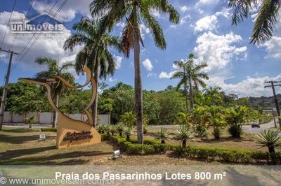 Condomínio Praia Dos Passarinhos, Lote A Venda, Lote 800 M², Ponta Negra, Manaus / Am. - Te00145 - 32429858