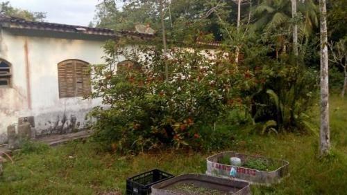 Chácara À Venda Cercada No J. São Fernando, Ref. C0083 L C