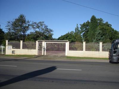 Terreno - Santa Lucia - Ref: 6564 - V-6564