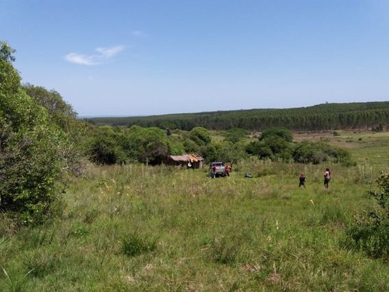 Hermoso Campo,muy Linda Vista,deal Descanso,arroyo