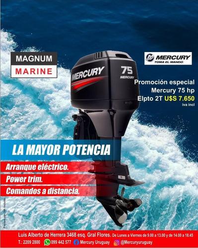 Motor Mercury Fuera Borda 75 Hp 2t Trim Comandos Garantia
