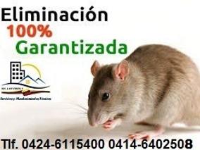 Fumigaciones Contra Ratas Y Ratones 100% Garantizadas...