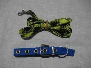 Collar Para Perro Chico