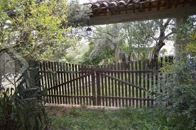 Terreno - Aguas Claras - Ref: 209394 - V-209394