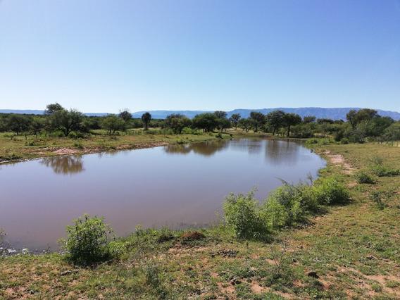 Campo De 62 Hectáreas En San Luis