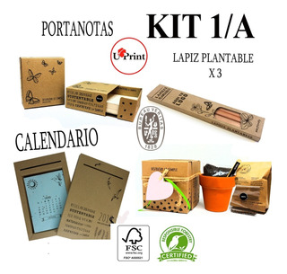 Maceta/kit 1a/eco Friendly/plantable/lápiz/empresas/fiestas